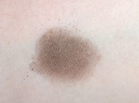 Josie Maran Eyeshadow_Iron swatch