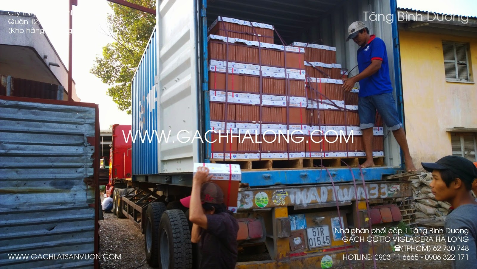 gach cotto ha long tren xe container