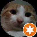 Image Google de keanu le chat