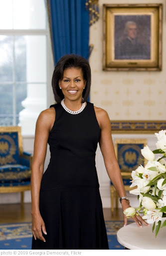 'First Lady Michelle Obama official photographic portrait' photo (c) 2009, Georgia Democrats - license: http://creativecommons.org/licenses/by/2.0/