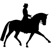 Dressage Freestyle Designer