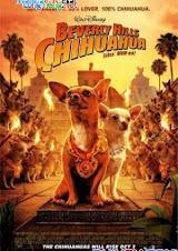 Những Chú Chó Chihuahua Ở Đồi Beverly