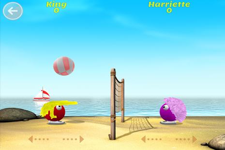Hairy Harry Beach Volleyball- screenshot thumbnail
