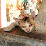 Тайланд 15.05.2012 12-37-53.jpg
