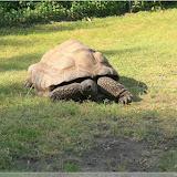 Besuch im Tierpark