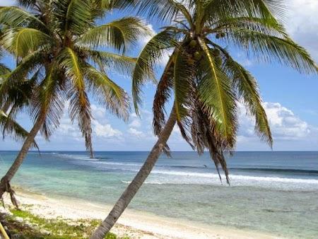 Savannah Cayman