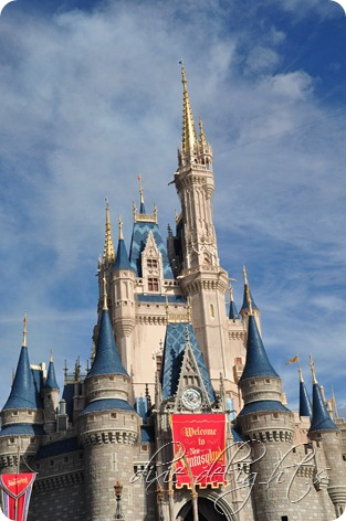 Disney December 2012 611