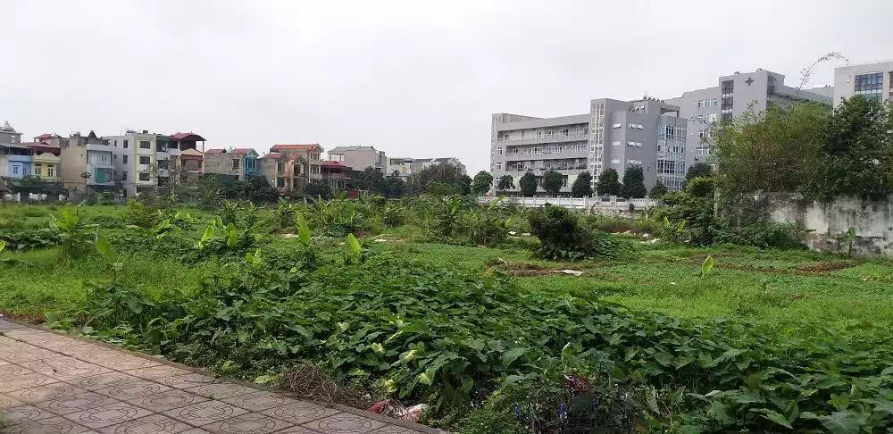 Khu đất được giao để thực hiện dự án Trung tâm giặt là, tiệt trùng tại phường Việt Hưng, quận Long Biên nằm ở vị trí gần UBND quận Long Biên.