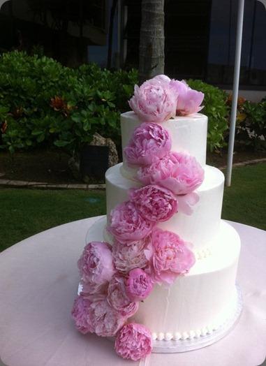 pink peonies 217497_10150162657480975_341338980974_6828201_1090583_n yvonne design