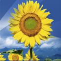 Atelier Annelies logo