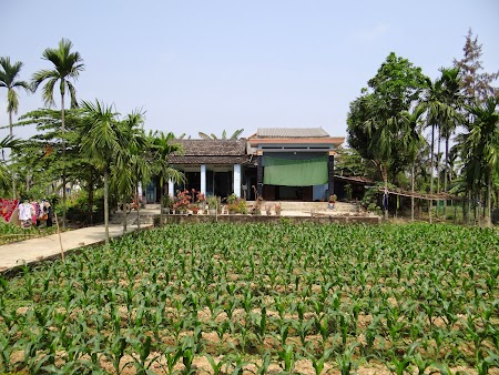 15. Gospodarie rurala Vietnam.JPG