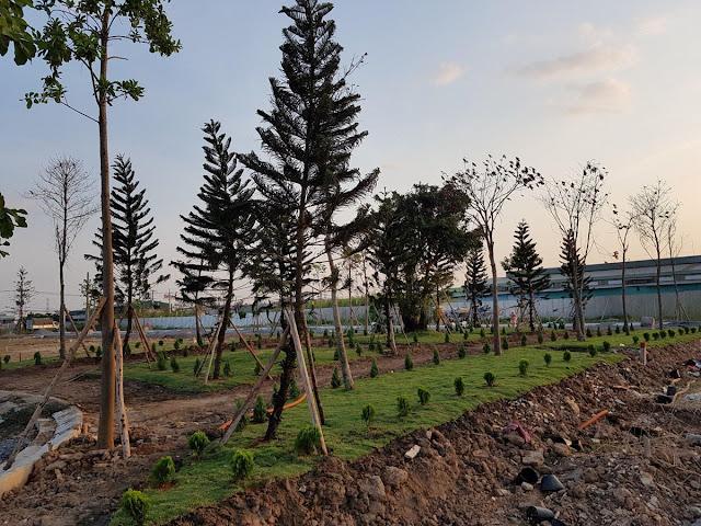Bán đất thổ cư Huyện Bình Chánh, ngay Trung Tâm Hành Chính của Huyện Bình Chánh, giá 32 triệu/m2:-2