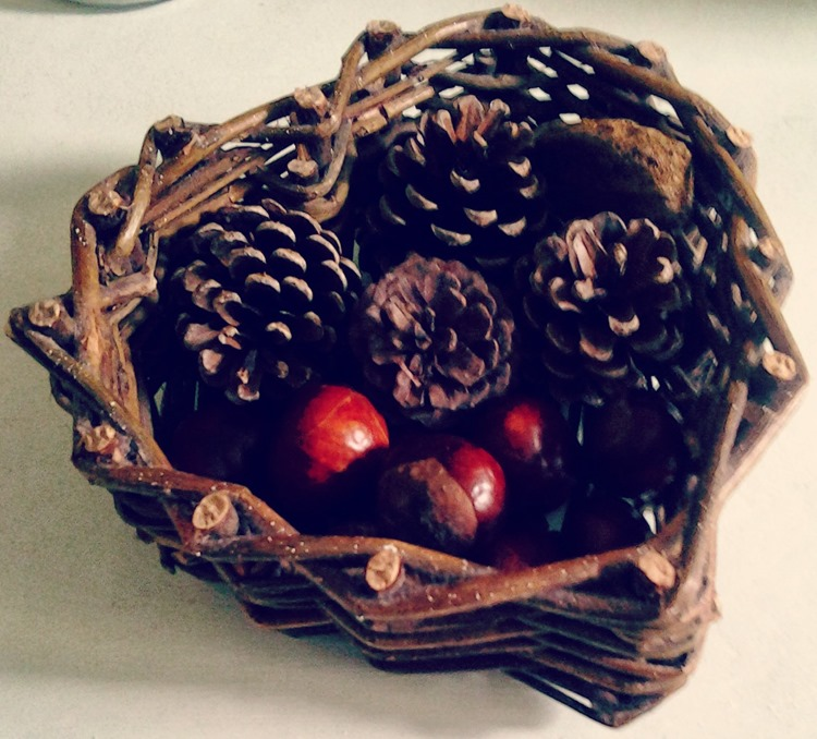 pinecones and conkers