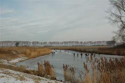 verstild winters landschap.JPG