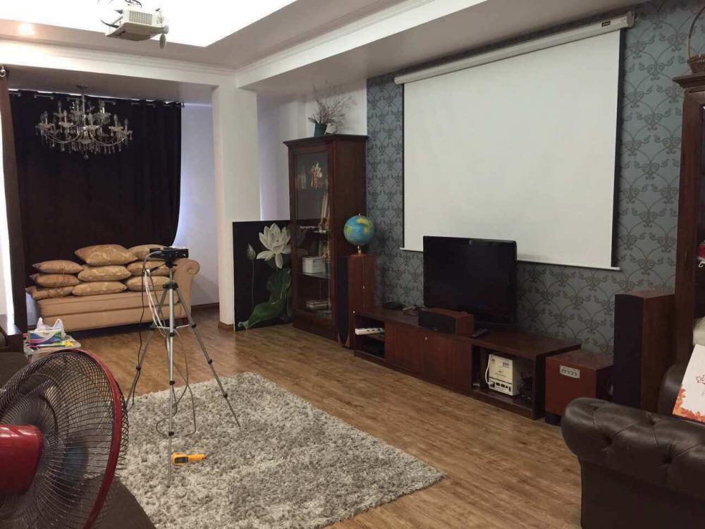Bán Biệt Thự Mặt Tiền đường Trần Thủ Độ Quận Tân Phú 04