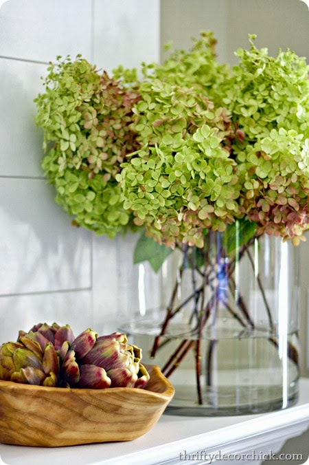 Early fall hydrangeas