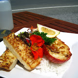 South Island - Kaikoura - fresh Crayfish