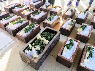 Mỗi tháng, CLB Sẻ chia sự sống Hà Nội sẽ tổ chức chôn cất cho các thai nhi tại một nghĩa trang ở Nam Định. Trong ảnh, mỗi chiếc tiểu đều là một sinh linh hài nhi không có cơ hội chào đời, các bạn tình nguyện viên đặt những bông hồng trắng vào đó.