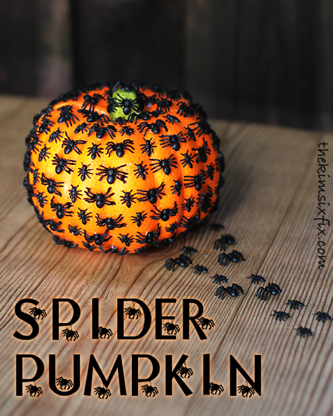 Spider Pumpkin Png