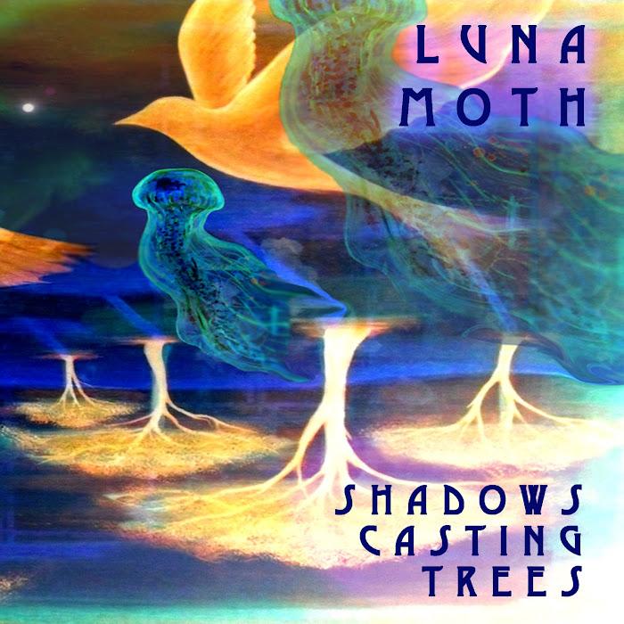 Luna Moth - Shadows Casting Trees