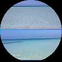 Immagine del profilo di Fabry Albanese