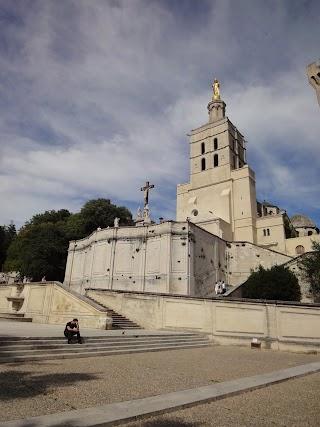 Cathédrale Notre-Dame des Doms à Avignon