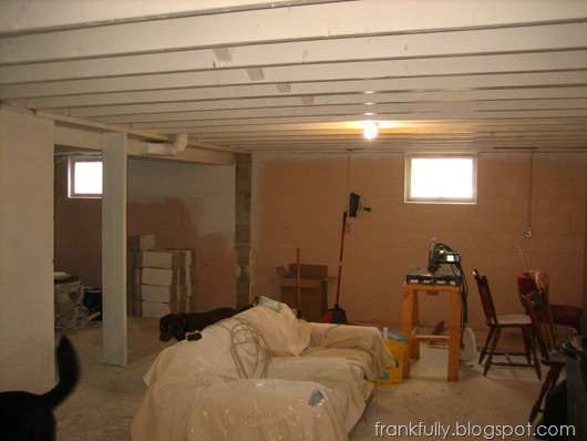 Frankfully Our Unfinished Basement