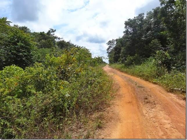 BR-319_Humaita_Manaus_Day_3_DSC05571