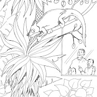 camalean-en-el-zoolagico-en-el-arbol-dibujos-para-colorear.jpg