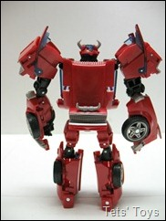 Cliffjumper (8)