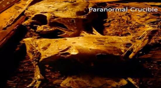 Artefatos alienígenas possíveis-corpos-mumificados-de-ETs