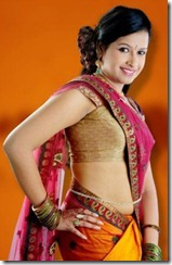 actress sadhika _in_halfsareel