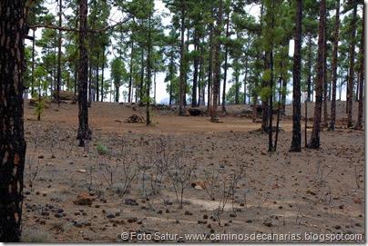 6907 Circular Cruz Grande(Zona acampada Los Bailaderos)