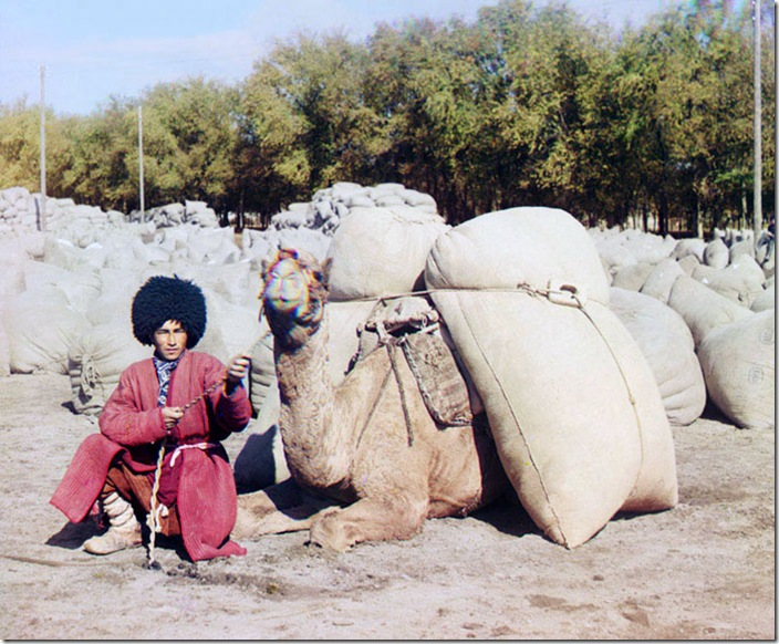 Turkmen-Man-Posing-with-Camel.-.-.-ca.-1907-1915