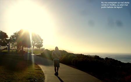 Obiective turistice SUA: Malibu Beach