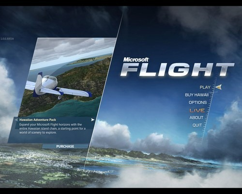 Microsoft Flight-00