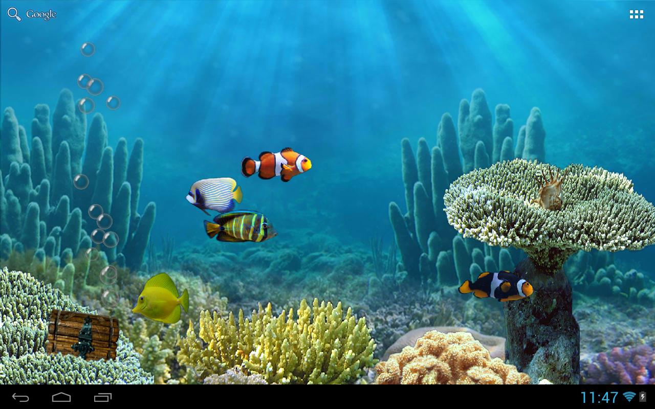 Fish live wallpaper 2017 2018 best cars reviews for Live fish aquarium