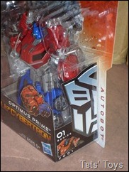 FOC optimus (3)