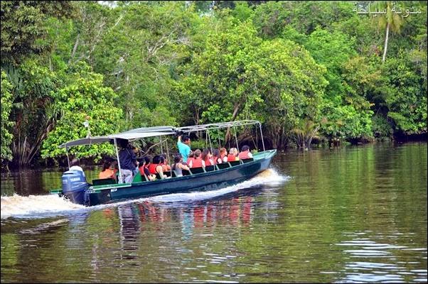 جولة في بروناي الساحرة