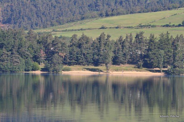 Lac d'Issarlès photo #502
