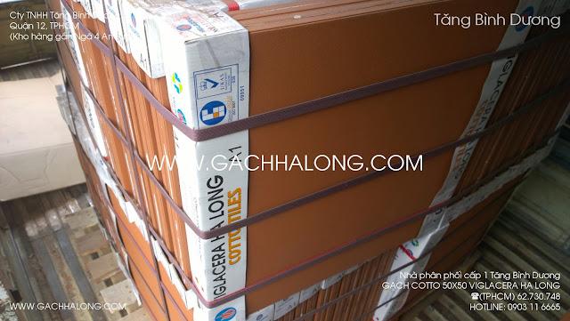 Gạch cotto 50x50 Viglacera Hạ Long