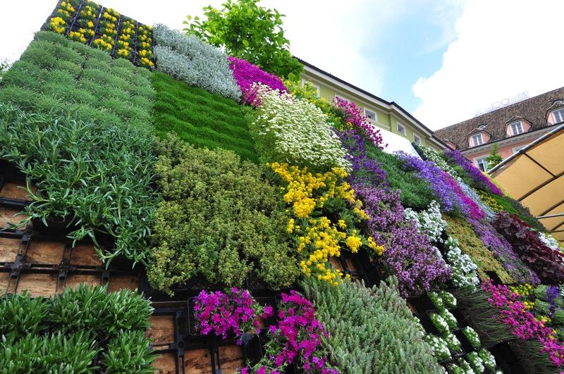 Squarciomomo la festa dei fiori a bolzano - Immagini giardini rocciosi ...