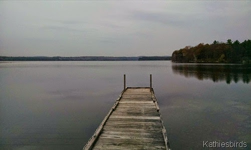 13. gray skies at lake auburn 11-6-14