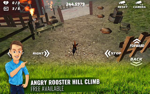 Angry Rooster Simulation - screenshot