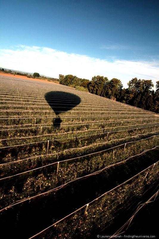 Landing-in-a-peach-field1