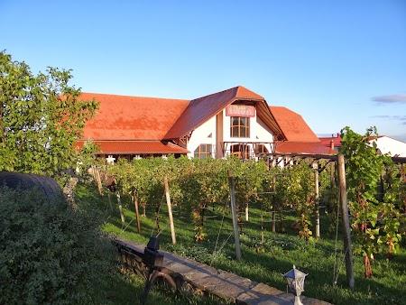 Drumul vinului -Basarabia: Podgorie Orhei