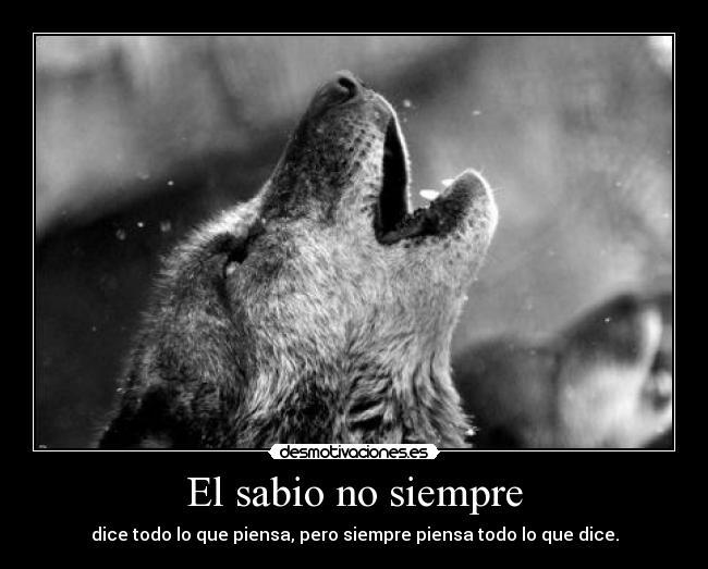 La Huella Del Lobo Ibérico Lobos Y Frases