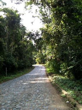 Estrada para Santana dos Montes