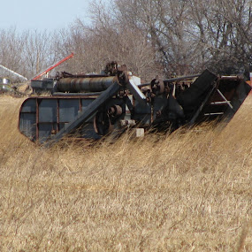 An old Threshing Machine by Mary Pass - Landscapes Prairies, Meadows & Fields