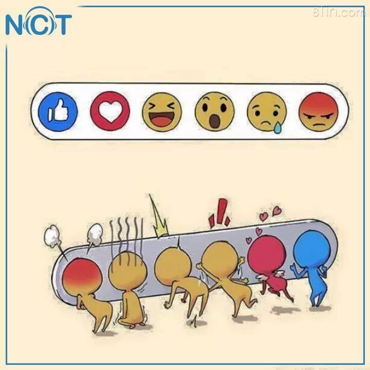 Phía sau cánh gà :))) Nguồn: NCT